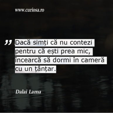 citat motivational Dalai Lama tantar