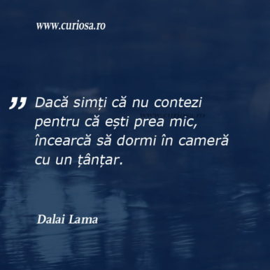 Dalai Lama citat motivational