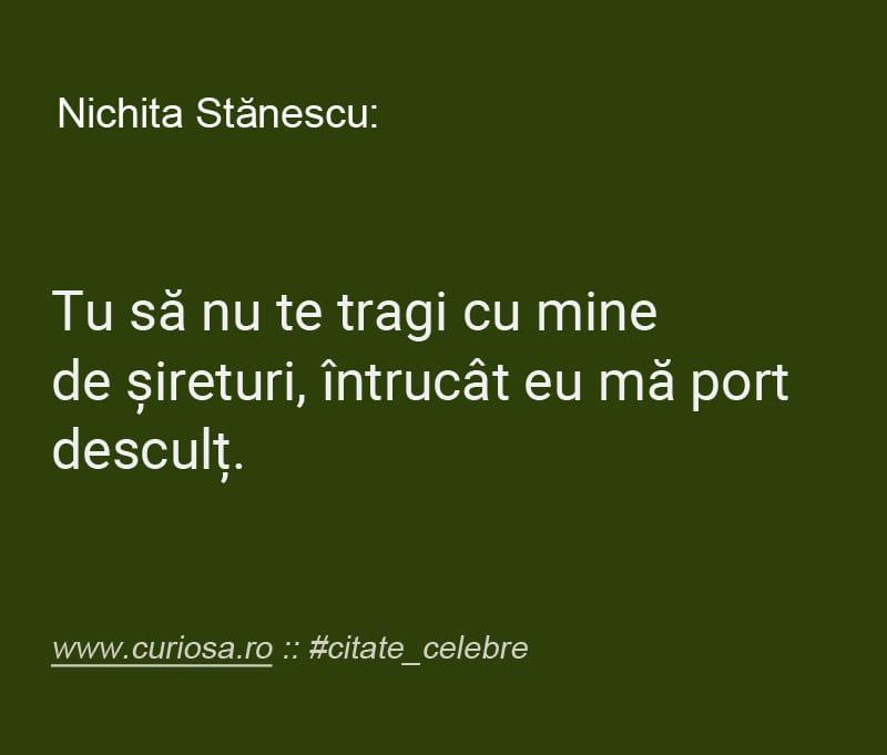 nichita stanescu citat tragi de sireturi descult