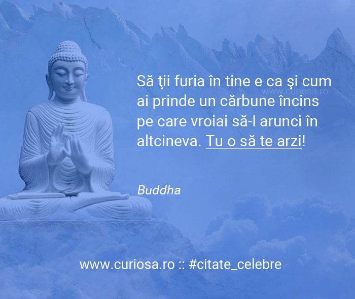 citate celebre buddha