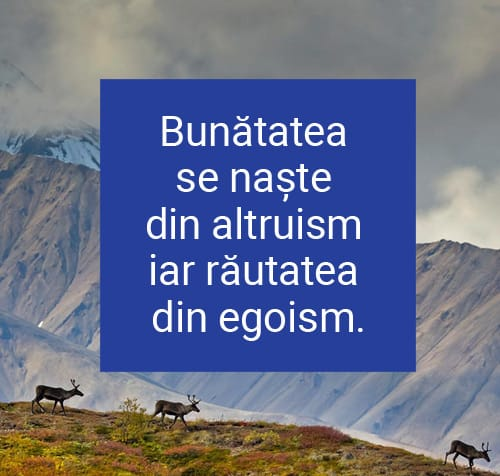 citate egoism egoisti