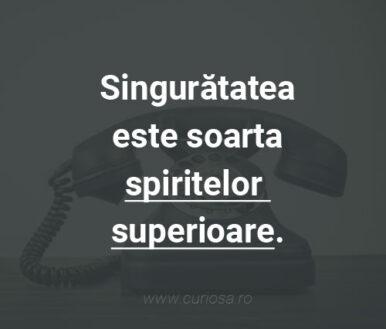singuratatea este soarta spiritelor superioare